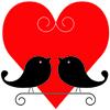 Love Birds, Meherchand Market